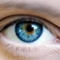 alergije i vid